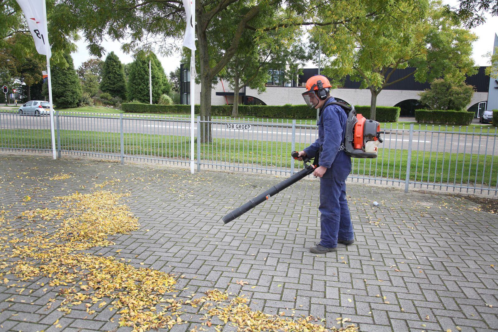 Leaf blower backpack model petrol